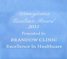 Pennsylvania Excellence Award 2013